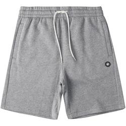 Odjeća Muškarci  Bermude i kratke hlače DC Shoes Riot Sweat Siva