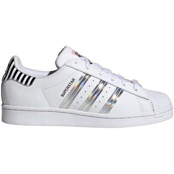 Obuća Žene  Niske tenisice adidas Originals Superstar