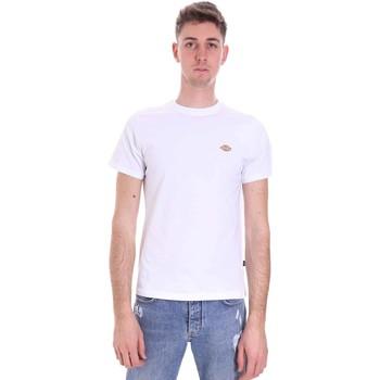 Odjeća Muškarci  Majice kratkih rukava Dickies DK0A4XDAWHX1 Bijela
