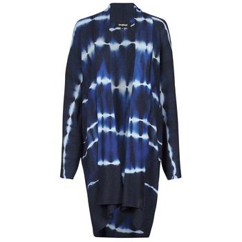 Odjeća Žene  Veste i kardigani Desigual BRUMA Blue