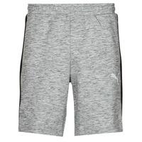 Odjeća Muškarci  Bermude i kratke hlače Puma EVOSTRIPE SHORTS 8 Siva / Crna