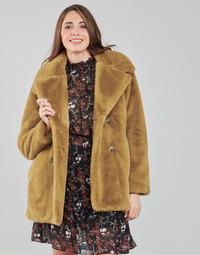 Odjeća Žene  Kaputi Oakwood PERSHING Camel