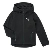 Odjeća Dječak  Sportske majice Puma EVOSTRIPE FZ HOODED JACKET Crna