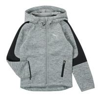 Odjeća Dječak  Sportske majice Puma EVOSTRIPE FZ HOODED JACKET Siva