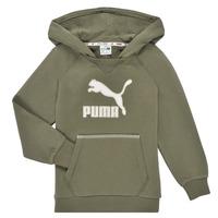 Odjeća Dječak  Sportske majice Puma T4C HOODIE Kaki