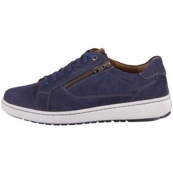 Obuća Muškarci  Derby cipele Josef Seibel David 07