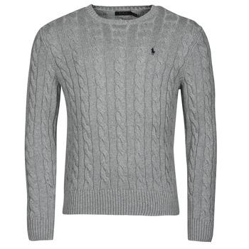 Odjeća Muškarci  Puloveri Polo Ralph Lauren SERINA Siva