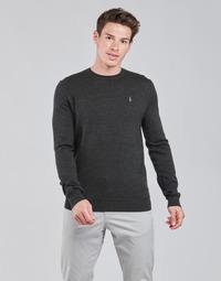 Odjeća Muškarci  Puloveri Polo Ralph Lauren AMIRAL Siva