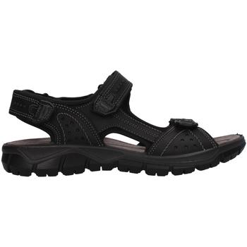 Obuća Muškarci  Sportske sandale IgI&CO 7130000 BLACK