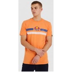 Odjeća Muškarci  Majice kratkih rukava Ellesse CAMISETA CORTA HOMBRE  SHI09758 Narančasta