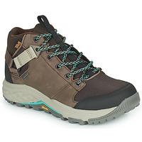 Obuća Žene  Pješaćenje i planinarenje Teva GRANDVIEW GTX Smeđa