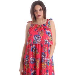 Odjeća Žene  Haljine Gaudi 911FD15039 Ružičasta