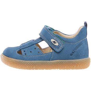 Obuća Djeca Sandale i polusandale Falcotto 2012531 91 Plava