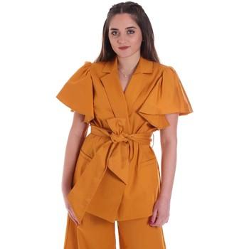 Odjeća Žene  Jakne i sakoi Cristinaeffe 0308 2491 Žuta boja