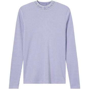 Odjeća Žene  Majice dugih rukava Calvin Klein Jeans J20J215228 Ljubičasta