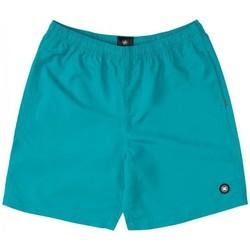 Odjeća Dječak  Kupaći kostimi / Kupaće gaće DC Shoes BAÑADOR PISCINA NIÑO DC EDBWS03069 Zelena