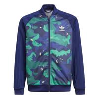 Odjeća Dječak  Gornji dijelovi trenirke adidas Originals HARRA Multicolour