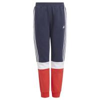 Odjeća Dječak  Donji dio trenirke adidas Performance ALMANA Red