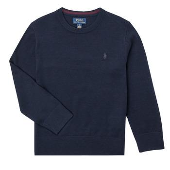 Odjeća Dječak  Puloveri Polo Ralph Lauren DENILA Blue