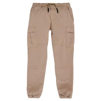 Odjeća Dječak  Cargo hlače Teddy Smith PIKERS CARGO Bež