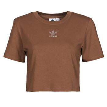Odjeća Žene  Majice kratkih rukava adidas Originals CROPPED  TEE Smeđa