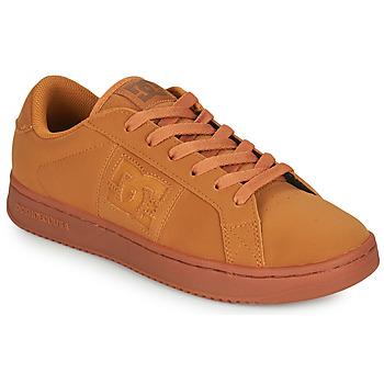 Obuća Muškarci  Niske tenisice DC Shoes STRIKER Camel
