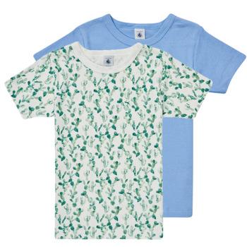 Odjeća Dječak  Majice kratkih rukava Petit Bateau LOLITA Multicolour