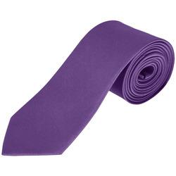 Odjeća Kravate i modni dodaci Sols GARNER Morado Oscuro Violeta