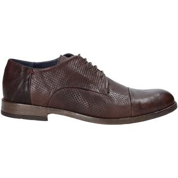 Obuća Muškarci  Derby cipele Rogers CP 05 Smeđa