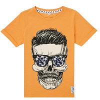 Odjeća Dječak  Majice kratkih rukava Name it NKMKSOYTAN SS TOP Žuta