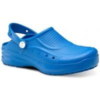 Obuća Muškarci  Klompe Feliz Caminar Zueco Laboral Flotantes Evolution - Blue