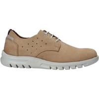 Obuća Muškarci  Derby cipele Rogers 2834-NOB Bež