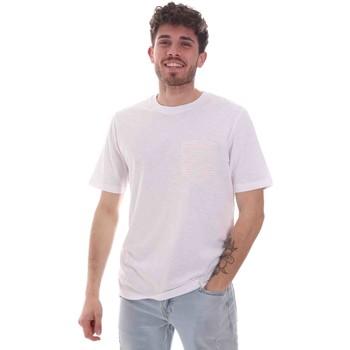 Odjeća Muškarci  Majice kratkih rukava Sseinse TE1852SS Bijela