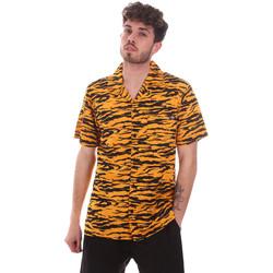 Odjeća Muškarci  Košulje kratkih rukava Dickies DK0A4XA5B591 Naranča