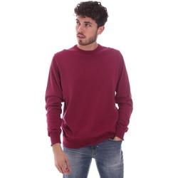 Odjeća Muškarci  Puloveri Navigare NV00203 30 Crvena