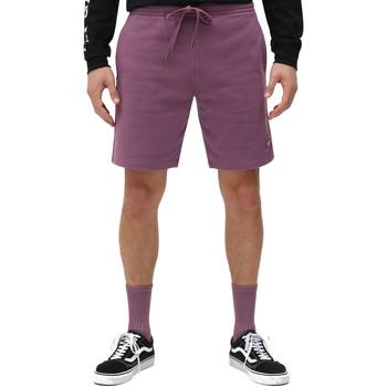 Odjeća Muškarci  Bermude i kratke hlače Dickies DK0A4XAYB651 Ljubičasta