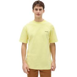 Odjeća Muškarci  Majice kratkih rukava Dickies DK0A4X9OB541 Žuta boja