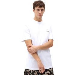 Odjeća Muškarci  Majice kratkih rukava Dickies DK0A4X9OWHX1 Bijela