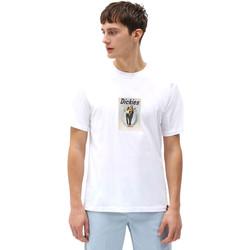 Odjeća Muškarci  Majice kratkih rukava Dickies DK0A4X9IWHX1 Bijela