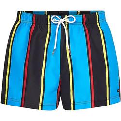 Odjeća Muškarci  Kupaći kostimi / Kupaće gaće Tommy Hilfiger UM0UM02076 Plava
