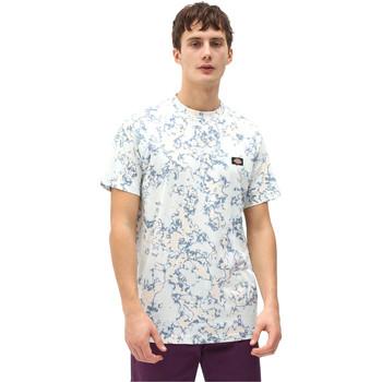 Odjeća Muškarci  Majice kratkih rukava Dickies DK0A4X9PB551 Plava