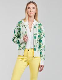 Odjeća Žene  Sportske majice Desigual COMO Multicolour