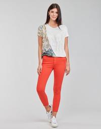 Odjeća Žene  Hlače s pet džepova Desigual ALBA Red