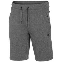 Odjeća Muškarci  Bermude i kratke hlače 4F SKMD014 Siva