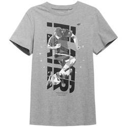 Odjeća Muškarci  Majice kratkih rukava 4F H4L21 TSM011 Siva