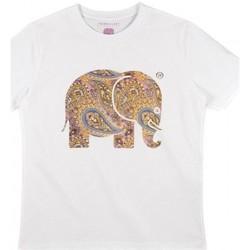 Odjeća Žene  Košulje i bluze Trendsplant CAMISETA MUJER  029940WPTW Bijela