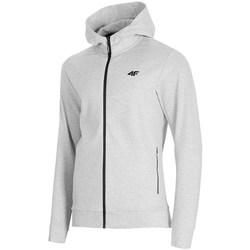Odjeća Muškarci  Sportske majice 4F BLM013 Siva