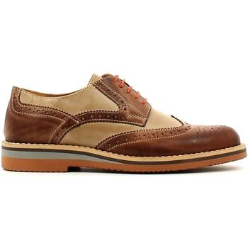 Obuća Muškarci  Derby cipele Rogers 1226B Smeđa