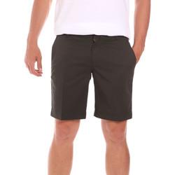 Odjeća Muškarci  Bermude i kratke hlače Colmar 0864T 8SP Zelena