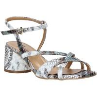 Obuća Žene  Sandale i polusandale Grace Shoes 123010 Siva